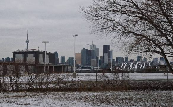 downtown T.O. from the Cherry beach dog park