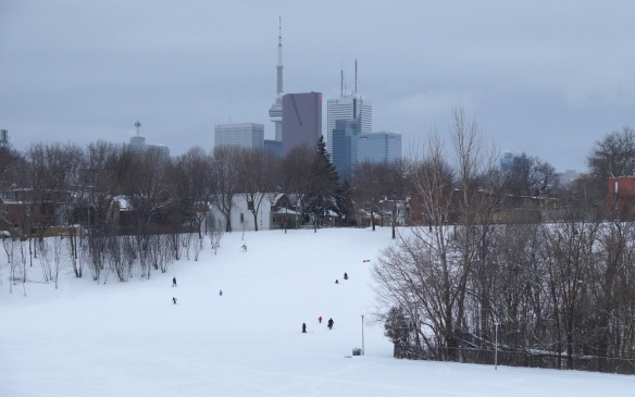 Riverdale West hill slide- the off-leash area is at the bottom