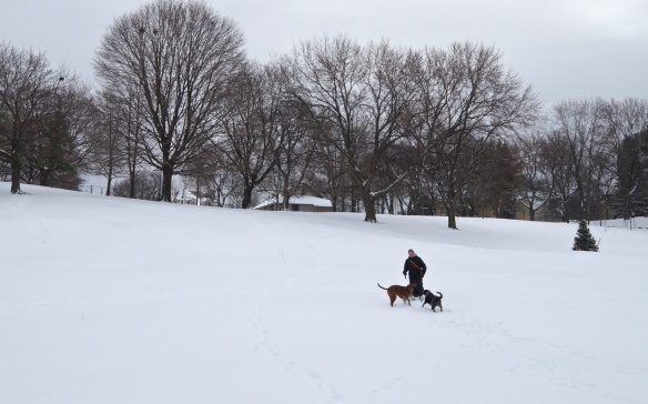 Fender and Mersey in the snow