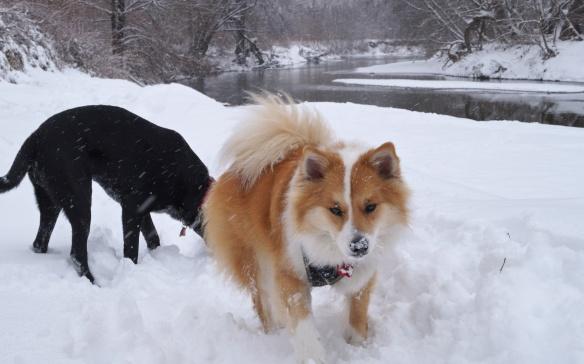 Tilda and Viggo on the banks of the Don River