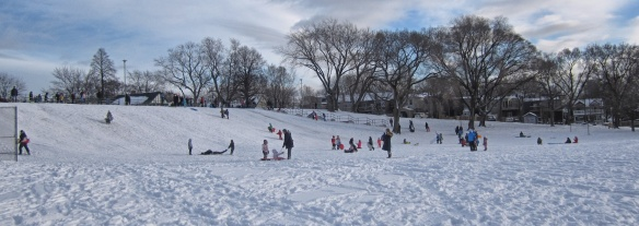Withrow Park Hill- a hill for younger sliders