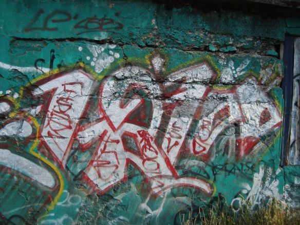a rare piece of graffiti in Punta Arenas
