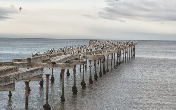 remnants of a dock on the Punta Arenas waterfront