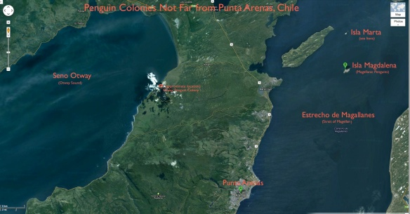 Map showing Penguin Colonies near Punta Arenas