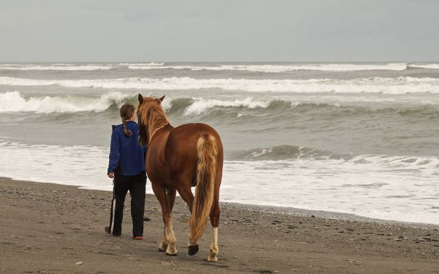 a-hokitika-area-farmer-and-her-horse