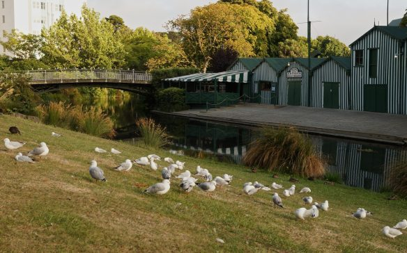 the Avon River flows by the Antigua Boat Sheds in Christchurch