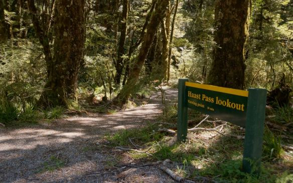 Haast Pass Lookout trailhead