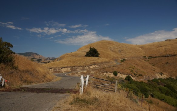 up in the Port Hills on a Sunday morning- a great place to be!