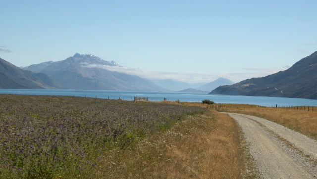 view of Lake Wakatipu before turn up the Mount Nocholas Road towards Mavora