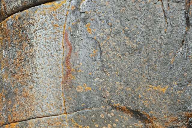 Cliff Lake pictograph of a snake - Dewdney site #264