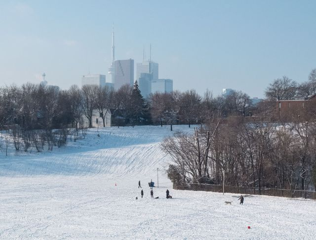 Riverdale Park West - an off-leash area for dogs