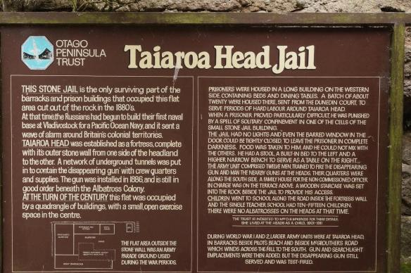 Taiaroa Head Jail - a bit of history on a plaque