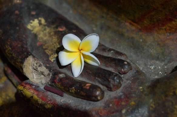 Dambulla Cave 1 flower offering in Buddha hand