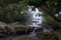 (Knuckles Range) The Thelgamu Oya at dawn