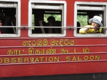 train at the Pattipola station