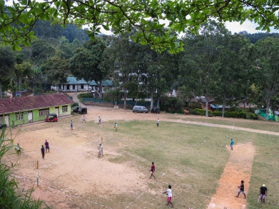 cricket/volleyball/football field at Ella