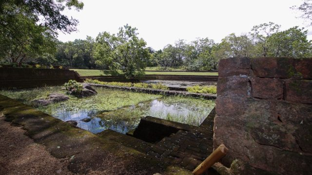 pond near the western entrance - south side