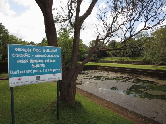 Sigiriya ponds near entrance