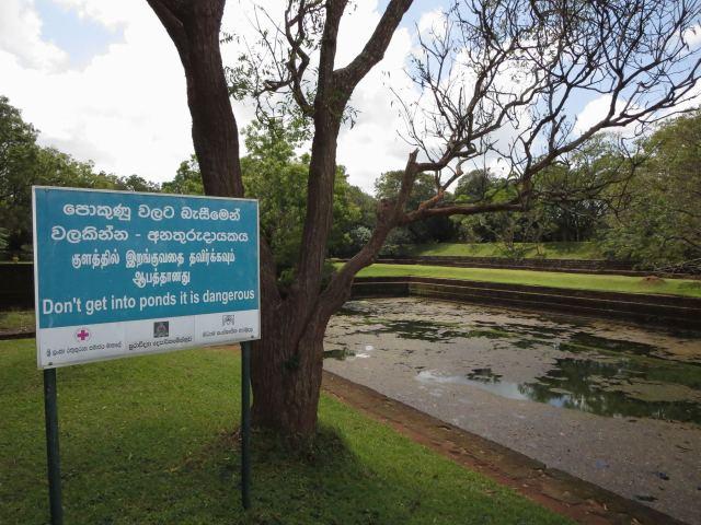 Sigiriya ponds near entrance