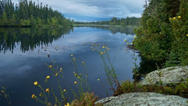 Felsia Lake morning