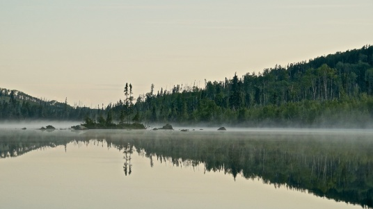 Morning Rush Hour on North Annette Lake