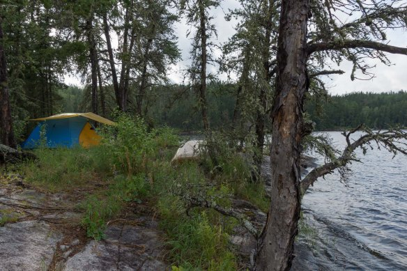 campsite south of Barclay Lake