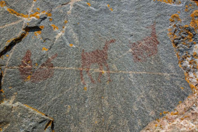 Panel XIII - Figure in Canoe and Two Woodland Caribou