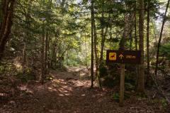 trail marker on Agawa Rock trail