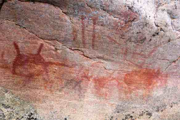 Artery Lake Pictograph Site- a collection of images south of Face IV (The Bison image)