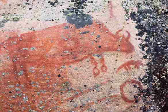 Artery Lake Pictograph Site- Face IV  bison up close