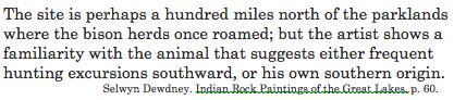 Dewdney buffalo explanation