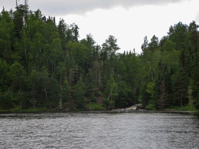 Douglas Lake stream coming into Red Lake