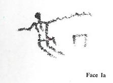 Face Ia