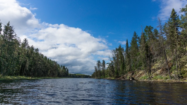 looking up the north arm of Artery Lake