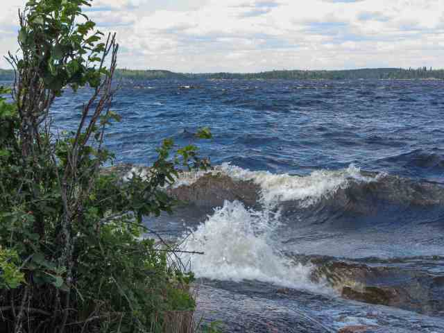the wind and waves of Larus
