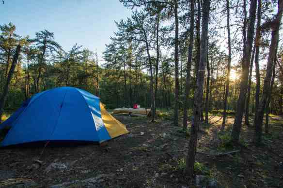 W26 camp set up