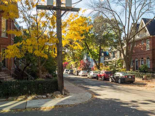 Cabbagetown fall colour