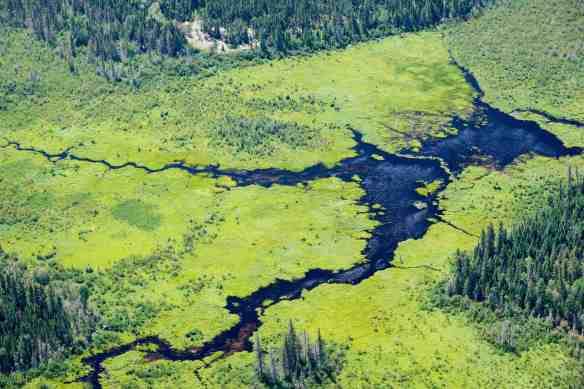 Off the Bloodvein - Kaneeshotekwayak Creek headwaters just above Meekisiwi Rapids