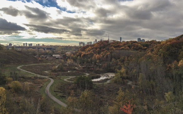 Toronto Skyline from above the Brickworks