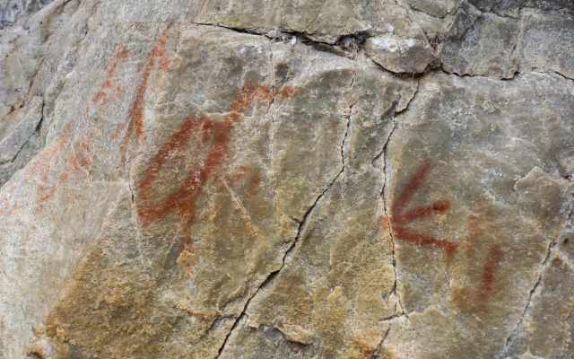 Diamond Lake pictographs - crane and bird tracks