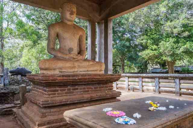 flower offerings in front of the Samadhi Buddha
