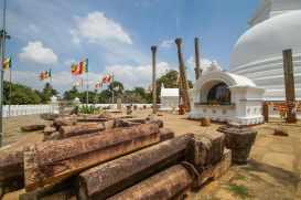 Thuparama pillars on the platform