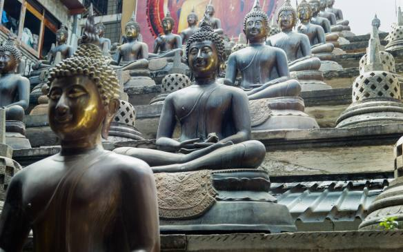 Thai Buddhas - row on row