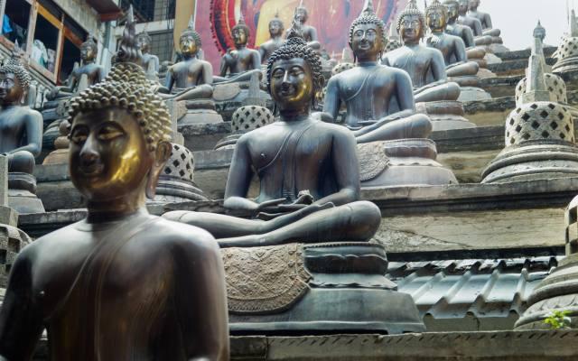 Thai Buddhas - row on row