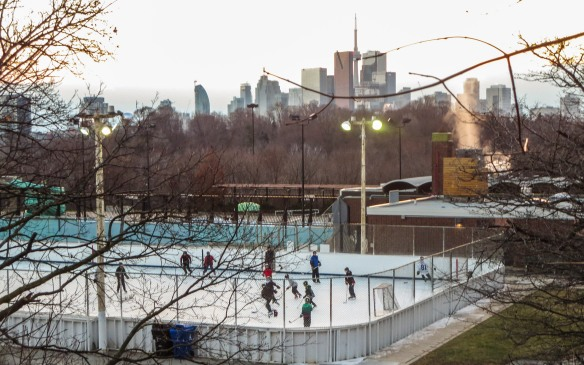 the neighbourhood skating rink - the only ice around!