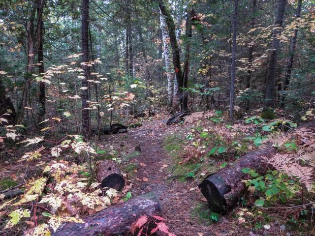 Chee-skon Hiking Trail marker