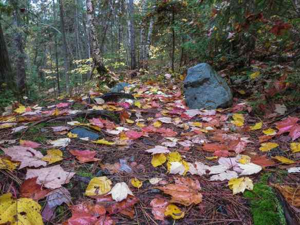 portage trail from Chee-skon to Mud Lake