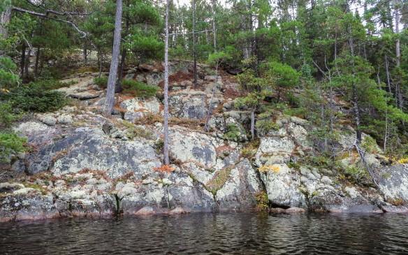 east shore of Mud Lake