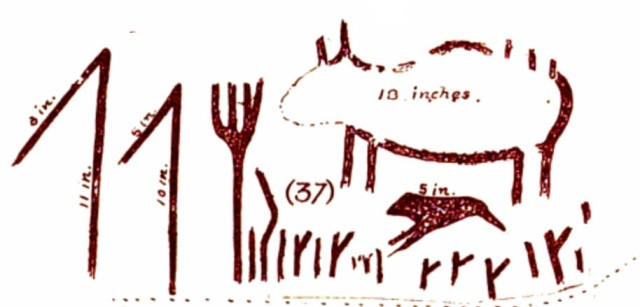 Boyle's drawing of what Dewdney labelled  Face II