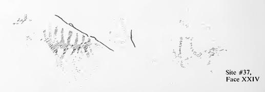 Dewdney sketch of mazinaw Face XXIV